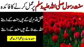 Hazrat Muhammad p b u h ki sunnat ka fayda/سنت رسول ﷺ کا فائدہ/Golbal Islamic Platform
