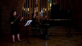Schubert Sonatina no1 op137 D.384  in D major, movement 1, Allegro Molto