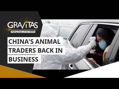 Gravitas: Wuhan Coronavirus: China's 'disease incubators' are back in business