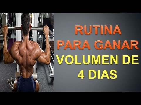 Volumen por un rutina musculo dia