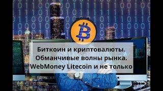 Биткоин и криптовалюты. Обманчивые волны рынка. WebMoney Litecoin и не только