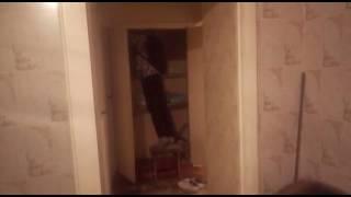Домовой в России (реальное видео)(Зоологии нашли домового пидафила ( оперативная съёмка,ловли), 2016-09-16T17:18:17.000Z)
