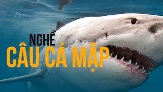 Weird stories | Hiden Dangers of Shark Fishing | Nghề câu cá mập | Hộp đen cuộc sống