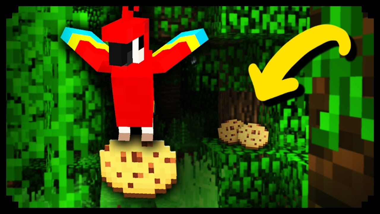how to find a parrot in minecraft