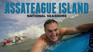 Assateague Island National Seaṡhore - Wild Horses and Beach Camping (Vlog)