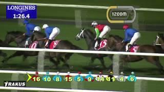 08.03.2014 Meydan (Dubai-UAE) 6.Race Dubai City Of Gold 2014 - Group II 2.410 m