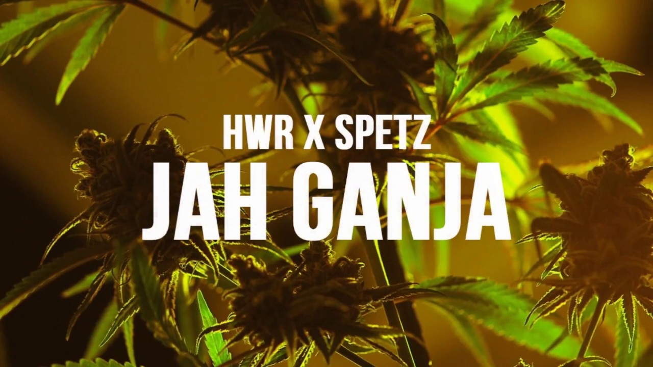 HWR x SPETZ - Jah Ganja ft. Revelation Soundsystem (Official Video)