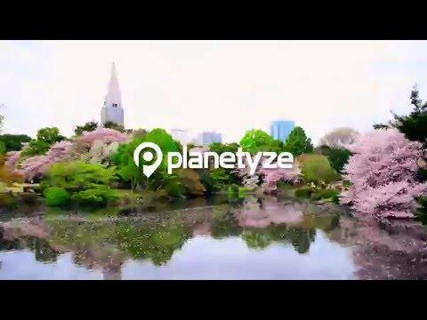 Shinjuku Gyoen National Garden, Tokyo - An Oasis in Tokyo | One Minute Japan Travel Guide