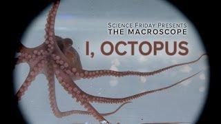 I, Octopus