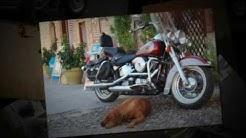 Finney Insurance Agency - Motorcycle Insurance - Harleysville, PA