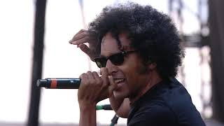 Alice In Chains Live at Sonisphere in 2014