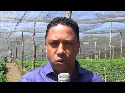 entrevista jose ramon Rodriguez