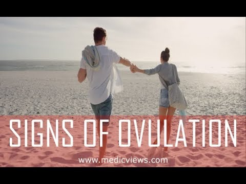 How do you know when you ovulate: signs of ovulation