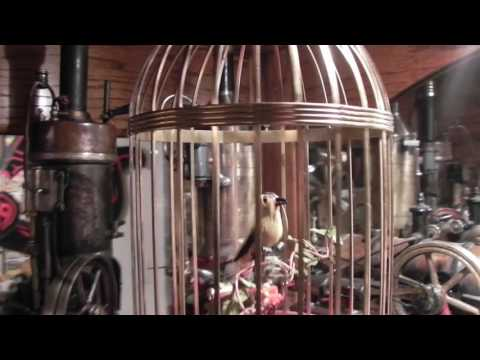 An old memory alive again, german made singing automaton bird fixed & back in cage.
