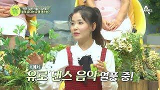 북한에서는 지금 유로 댄스 음악 열풍 중? |이제 만나러 갑니다 353회 thumbnail