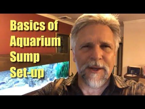 Aquarium Sump Set-Up Basics
