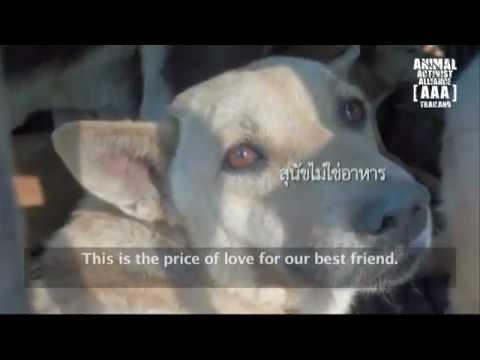 Hell on Earth- Thailand