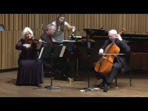 Joseph Haydn: Trio in G major Hob. XV/25, 3rd mov.- Rondo all'Ongarese (Gypsy Rondo)