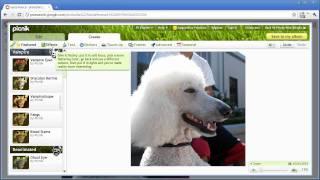 Picasa Web Albums Tip: Edit in Picnik