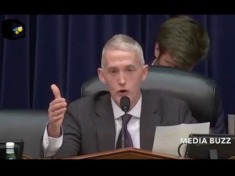 Trey Gowdy Hearing with Assistant Attorney General on Citizenship, Voting, Immigration, and Census