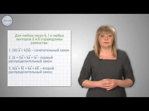 Видеоурок умножение вектора на число применение векторов к решению задач