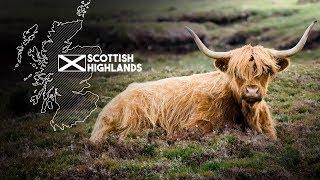 Highlands Travel Film