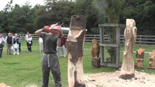 **new**chain Saw Carving At Fangfest