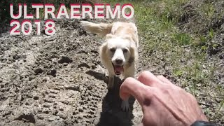 UltraEremo 2018 - da Carpegna a Gabicce Mare - 64Km D+ 1600m