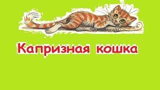 """""""Капризная кошка"""" Веселые сказки для детей. Сказки Сутеева с красочными картинками. (Full HD)"""