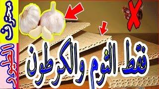 اقضي على الفاش بأبسط الطرق - lice in the simplest way