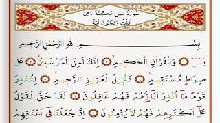surah yasin saad al ghamdi surah yasin with tajweed