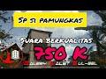 Sp Si Pamungkas Sudah Siap Mengudara Dengan Mahar  K Suara Super Bersih  Mp3 - Mp4 Download