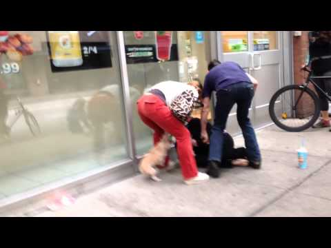 Thumbnail: Homeless woman steals dog - gets what's coming