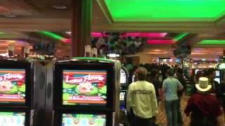 Hard Rock Casino Tampa