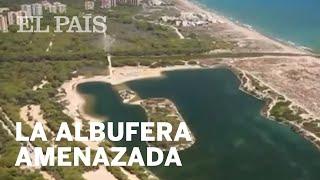 La ALBUFERA DE VALENCIA, amenazada por la FALTA DE AGUA y la contaminación