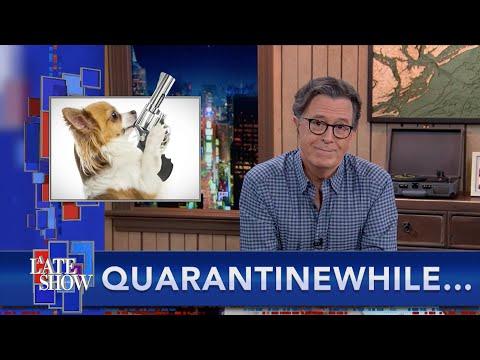 Quarantinewhile... Texas Man Shot By His Own Dog