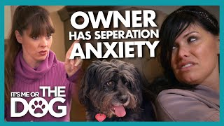 Owner has More Seperation Anxiety Than her Dog! | It's Me or The Dog