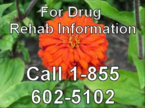 Top Government Based Christian Drug Rehab Local to Houston