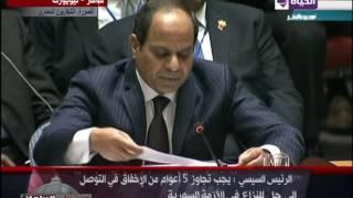 بالفيديو.. السيسي: لا دور للتنظيمات الإرهابية في مستقبل سوريا