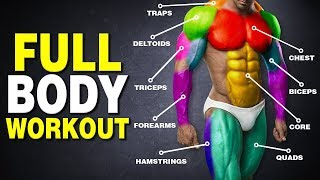 The Perfect Science-Based Full Body Workout for Mass (3-Day Routine)