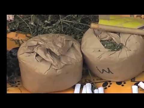 Samwel Kasuti reporting on Drug peddling suspect MTV KENYA MOMBASA,