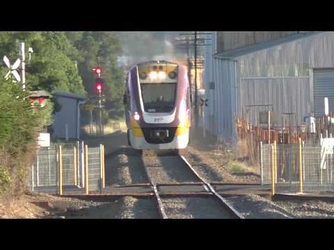 V/Line Vlocity Maryborough Line At Maryborough, Clunes And Invermay