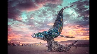 Burning Man : The Space Whale