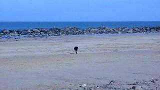 North Berwick' East beach
