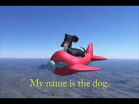 hqdefault the dog in the airplane dank meme youtube