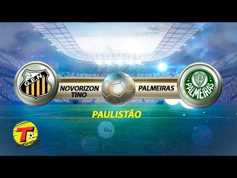 Grêmio Novorizontino x Palmeiras