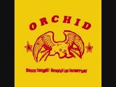 Orchid - I am Nietzche