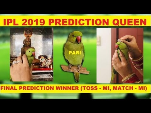 CSK VS DC Pre Match Analysis And DREAM 11 Prediction | MS Dhoni | Shreyas Iyer | Rishabh Pant | IPL from YouTube · Duration:  7 minutes 24 seconds