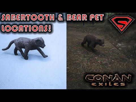 Conan Exiles Where To Find Sabertooth And Bear Cubs Youtube