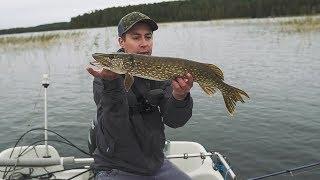 Осенняя ловля на спиннинг. Рыбалка нон-стоп 4 дня. В поисках хищной рыбы. День 1.